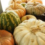 lots of pumpkins