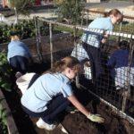 kids working in the garden